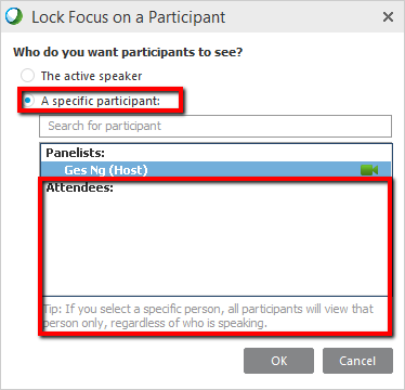 Lock Focus on a Participant screen with a specific participant selected and panelists and attendees region highlighted