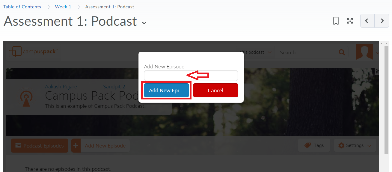 Pop-up window with a field to enter title text and two options: new episode and cancel.