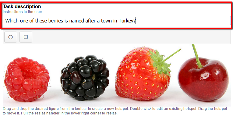 the hotspot tab with a larger version of the berries picture, and above the image, a task description field highlighted with an example task entered. The text reads which one of these berries is named after a town in Turkey?